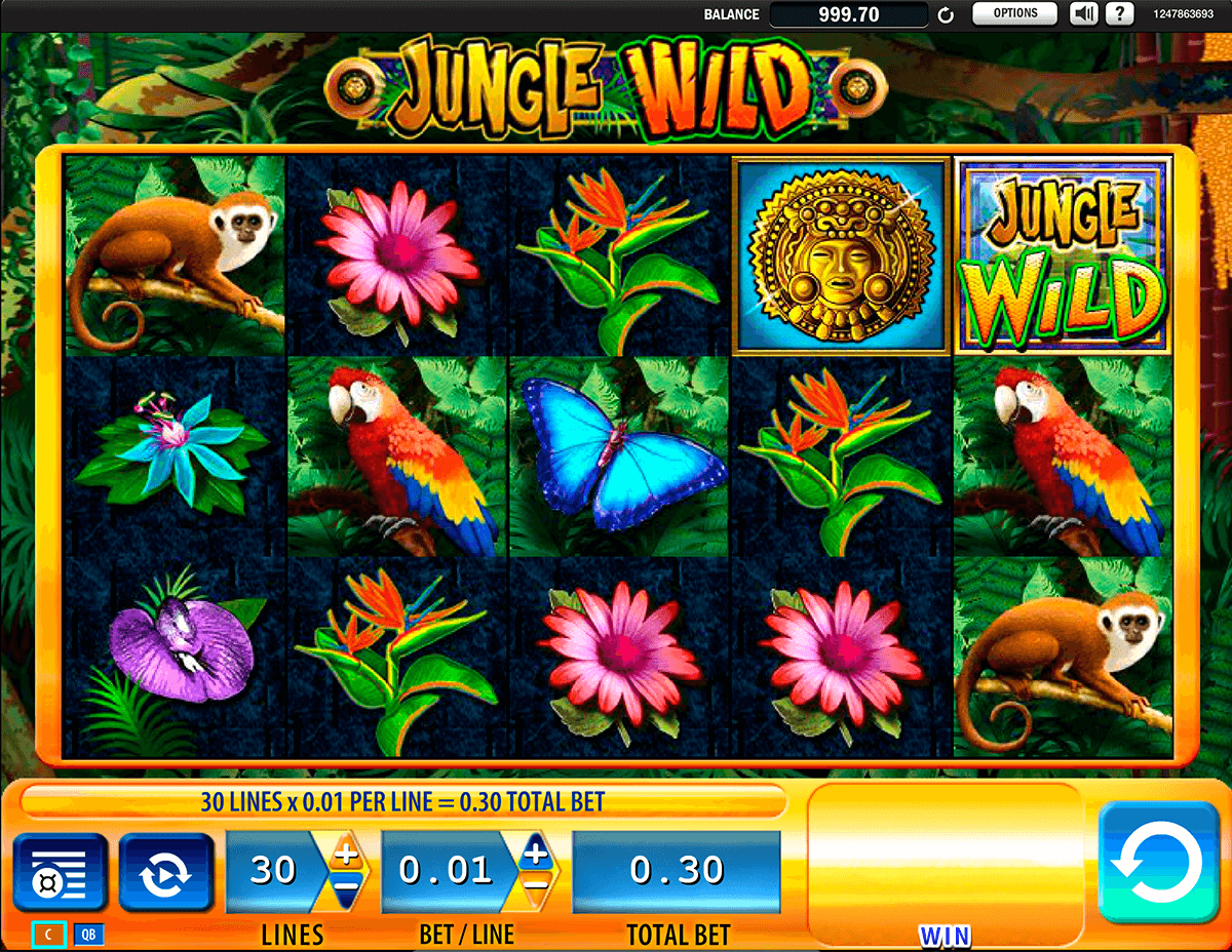 jungle wild wms casino