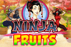 logo ninja fruits playn go kolikkopeli